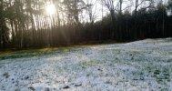 jesieny śnieg.jpeg